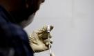 Vacina Covaxin, da Índia, será testada no Brasil